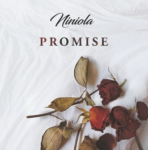 Photo of Niniola Promise
